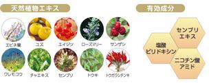 花蘭咲植物成分