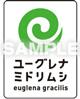 (株)ユーグレナ公認ミドリムシ食品・サプリの見分け方