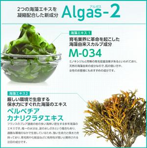 Algas-2