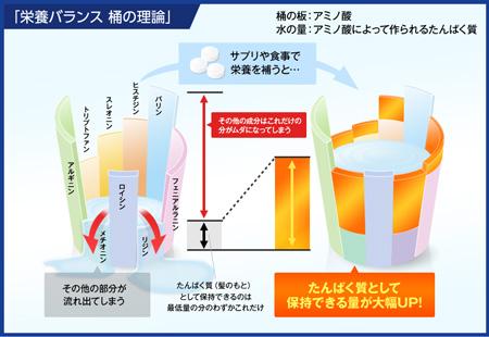 栄養バランス 桶の理論