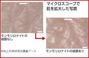 モンモリロナイト皮膜